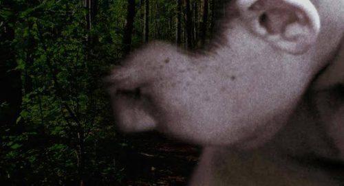 """Bunar želja"" Silvije Šedelbauer na The Unforeseen"
